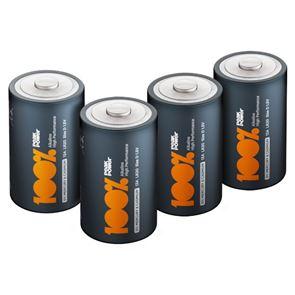 D Batteries (x2) Non-Rechargeable