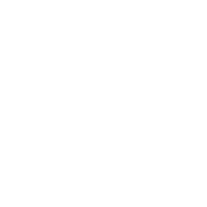 EcoViz Bickleton Class 3 Orange Brace Polo Shirt