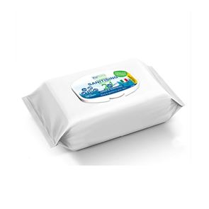 Multi-Purpose Sanitising Wipes (x100)