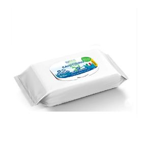 Multi-Purpose Sanitising Wipes (x60)
